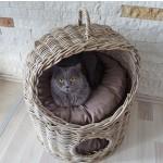 Katzenkorb KITTY von Kobolo aus stabilem Rattan 54x51x65/70 cm