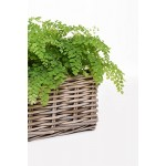 "Blumenkasten Fensterbankkasten Pflanzkasten Pflanzkübel Blumenkübel Rattan ""Pianta"" 80 cm, Koobo Grey"