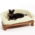 Weidenkorbsofa Weidenkorb Sofa 80 cm das Hundesaofa auf Rattan hat einen waschbaren Kuschel Bezug Ein Hundesofa nicht nur für Hunde auch Katzen benutzen es gerne