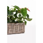 "Blumenkasten Fensterbankkasten Pflanzkasten Pflanzkübel Blumenkübel Rattan ""Pianta"" 60 cm, Koobo Grey"
