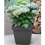 Geli E&K Topf Pflanztopf ca. 40 cm quadratisch anthrazit/purple