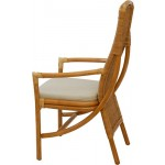 Esszimmer Rattan-Stuhl mit Armlehnen in der Farbe Honig inkl. Polster, Küchenstuhl aus Natur Rattan Versandkostenfrei in DE