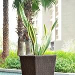 Blumfeldt Primaflor Hydro Pflanzkübel Blumenkasten (37 x 76 x 37 cm, Rattanoptik, integriertes Bewässerungssystem, Wasserstandsanzeiger, 1,5 kg Drainage-Granulat) schwarz
