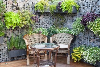 blumenkuebel mit farbenfrohe pflanze
