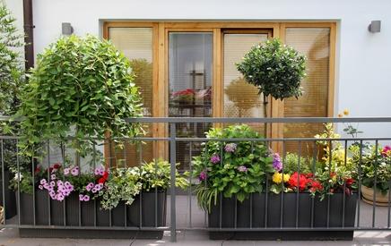 balkon bunt bepflanzt in verschiedenen Kästen
